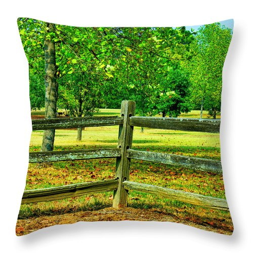 Fence Throw Pillow featuring the photograph Do Not Fence Me In by Ericamaxine Price