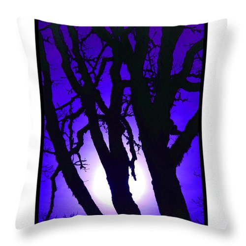 Oak Trees Throw Pillow featuring the photograph Do Not Go Gentle by Michael Moore