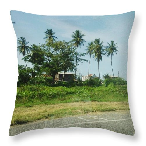 Landscape Throw Pillow featuring the photograph Do Not Litter by Denise Simpson