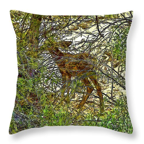 Digital Manipulation Throw Pillow featuring the photograph Do You See What I See? by Nancy Marie Ricketts