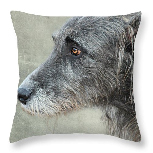 Dog Throw Pillow featuring the photograph dog by Heike Hultsch