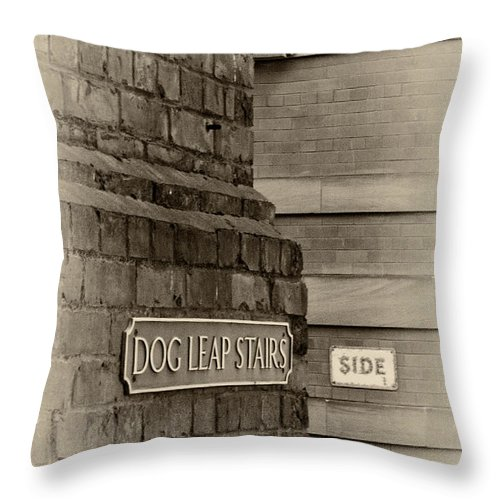 Dog Leap Stairs Throw Pillow featuring the photograph Dog Leap Stairs by David Pringle
