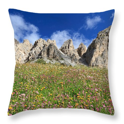 Alpine Throw Pillow featuring the photograph Dolomiti - Flowered Meadow by Antonio Scarpi
