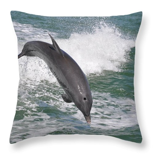 Landscapes Throw Pillow featuring the photograph Dolphin Leap by Deborah Good
