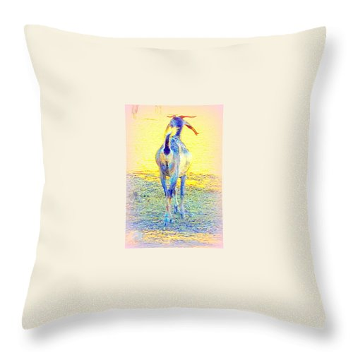 Goat Throw Pillow featuring the photograph Dont Walk Out On Me Baby, Stay With Me Forever by Hilde Widerberg