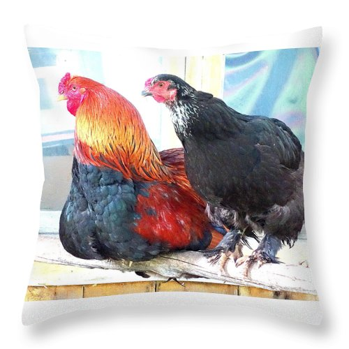 Bird Throw Pillow featuring the photograph Dont Worry About Tomorrow, Tomorrow Will Have Its Own Worries by Hilde Widerberg