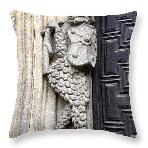 Cathedral Throw Pillow featuring the photograph Door Warrior by Lorraine Devon Wilke