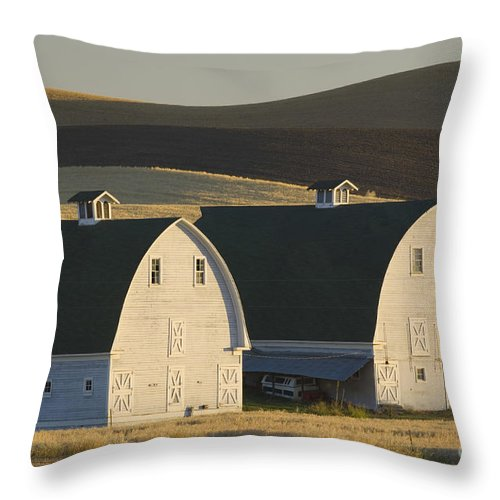 Agricultural Throw Pillow featuring the photograph Double Barns by John Shaw