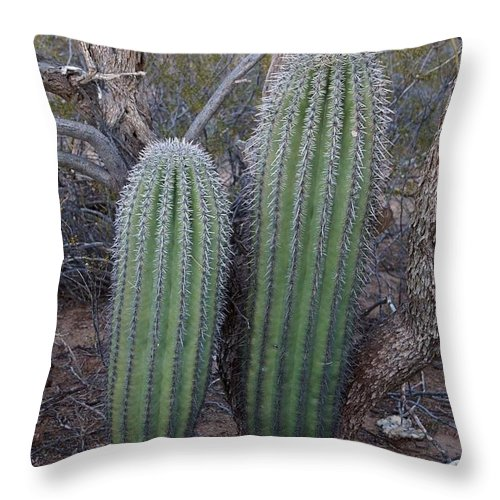 America Throw Pillow featuring the photograph Double Barrel Saguaro by Kerri Mortenson