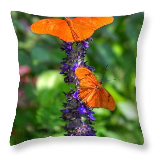 Nature Throw Pillow featuring the photograph Double Orange by Diane Backs-Mancuso