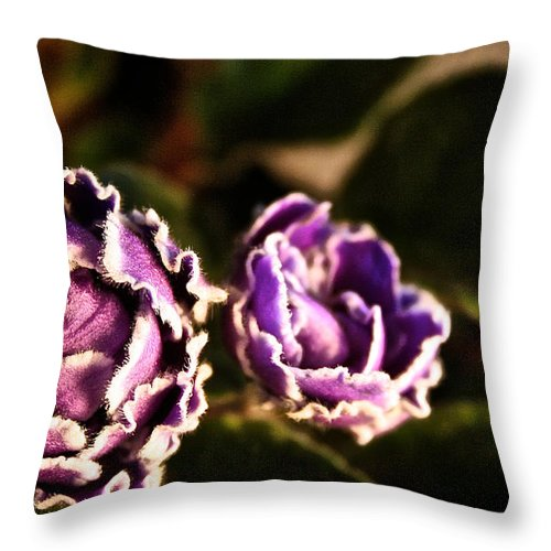 Flower Throw Pillow featuring the photograph Double Ruffle by Susan Herber