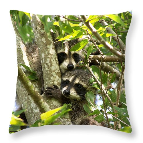 Nature Throw Pillow featuring the photograph Double Trouble by Peg Urban