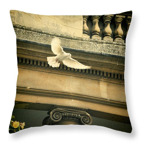 Dove Throw Pillow featuring the photograph Dove In Flight by Jill Battaglia