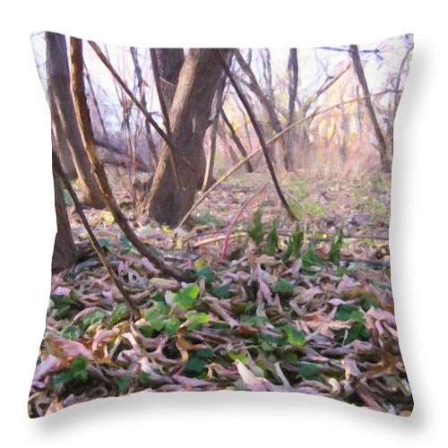 Landscape Throw Pillow featuring the photograph Down Here - Digital Painting Effect by Rhonda Barrett