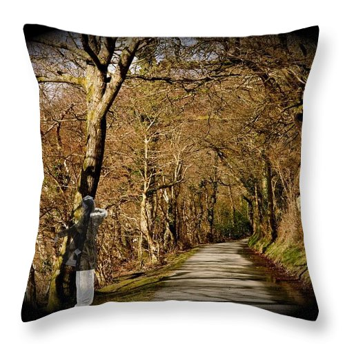 Spirit Throw Pillow featuring the photograph Down There by Christopher Rowlands