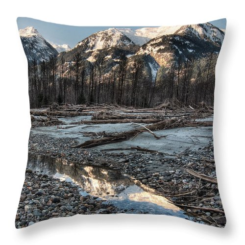 Beautiful Throw Pillow featuring the photograph Downed Trees by James Wheeler