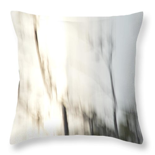 Quita Jean Throw Pillow featuring the photograph Downpour by Quita Jean