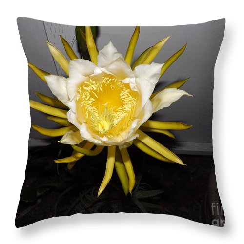 Flowers Throw Pillow featuring the photograph Dragon Fruit Blooming At Night I by Jussta Jussta