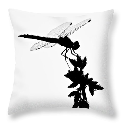 Dragonfly Silhouette Throw Pillow featuring the photograph Dragonfly Silhouette by Christina Ochsner