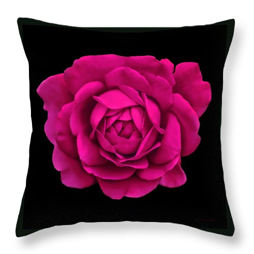 Rose Throw Pillow featuring the photograph Dramatic Hot Pink Rose Portrait by Jennie Marie Schell