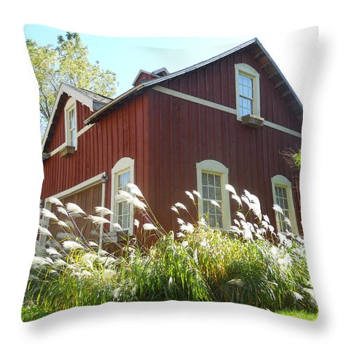 Buildings Throw Pillow featuring the photograph Dream Garage by Coleen Harty