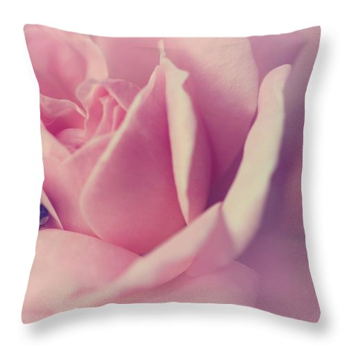 Roses Throw Pillow featuring the photograph Dream Rose by The Art Of Marilyn Ridoutt-Greene