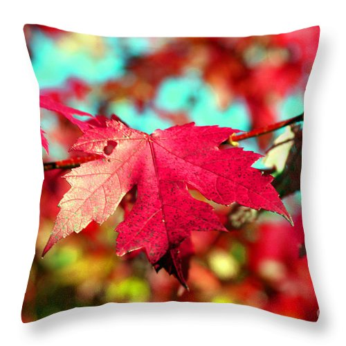 Leaf Throw Pillow featuring the photograph Dreaming Of Maple Jewels by Valerie Fuqua