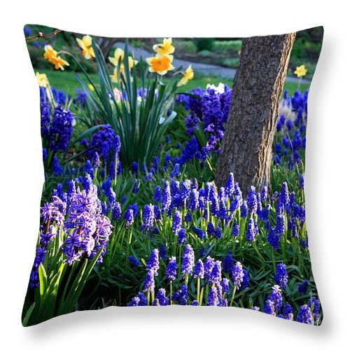 Spring Throw Pillow featuring the photograph Dreaming Of Spring by Carol Groenen