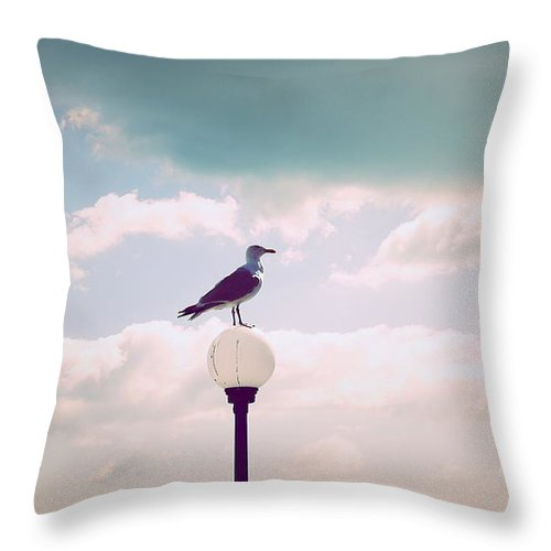 Fine Art Photo Throw Pillow featuring the photograph Dreaming Seagull by Igor Zharkov