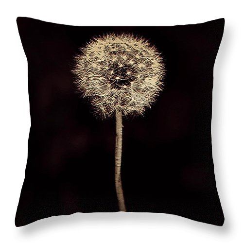 Dandelion Throw Pillow featuring the digital art Dreamy Dandelion by Miss Dawn