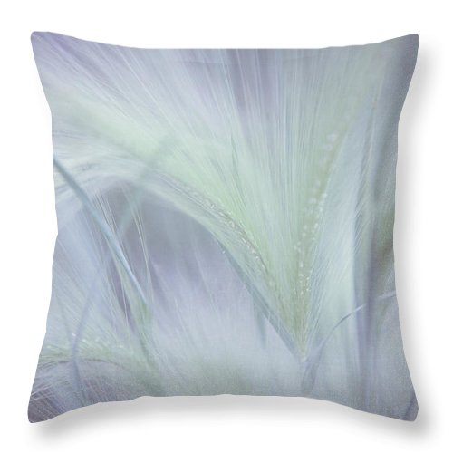 Grass Throw Pillow featuring the photograph Dreamy Softness. Pastel Grasses by Jenny Rainbow