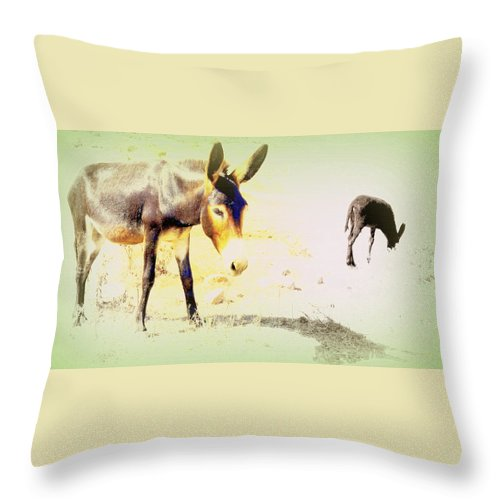 Donkey Throw Pillow featuring the photograph I Feel Totally Dried Out But I'm Not Dead Yet by Hilde Widerberg