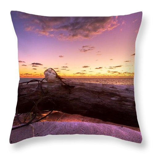 Clouds Throw Pillow featuring the photograph Driftwood by Debra and Dave Vanderlaan