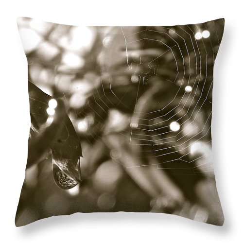 Web Throw Pillow featuring the painting Drip And Web by Gretchen Smith