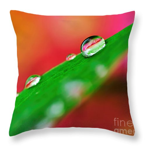 Photography Throw Pillow featuring the photograph Droplets by Kaye Menner