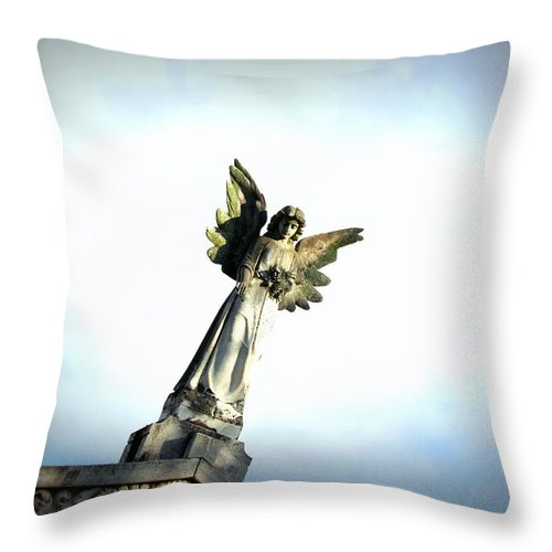 Dropping Flowers Throw Pillow featuring the photograph Dropping Flowers II by Beth Vincent