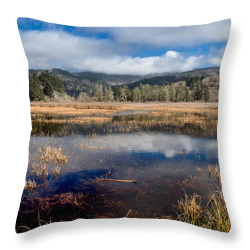 Reflections Throw Pillow featuring the photograph Dry Lagoon In Winter Panorama by Greg Nyquist