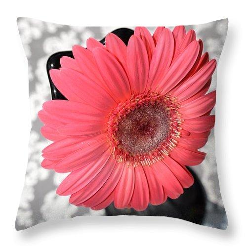 Gerber Throw Pillow featuring the photograph Dsc0060-002 by Kimberlie Gerner