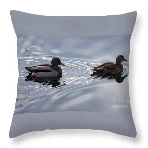 Malards Throw Pillow featuring the photograph Duck Pair by Sharon Elliott