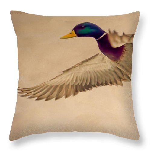 Duck Throw Pillow featuring the photograph Ducks In Flight by Bob Orsillo