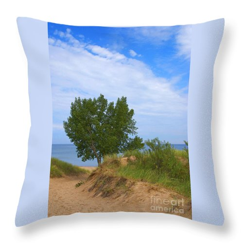 Dune Throw Pillow featuring the photograph Dune - Indiana Lakeshore by Ann Horn