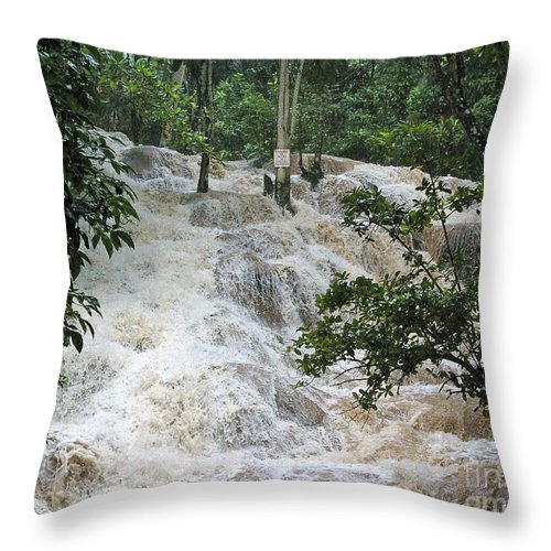 Jamaica Throw Pillow featuring the photograph Dunns River Falls 2 by Nancy L Marshall