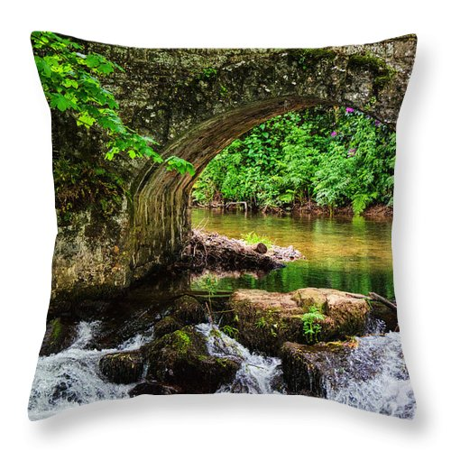 Dunster Castle Throw Pillow featuring the photograph Dunster Castle by Susie Peek