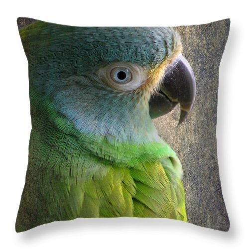 Conure Throw Pillow featuring the photograph Dusky Conure by Angie Vogel