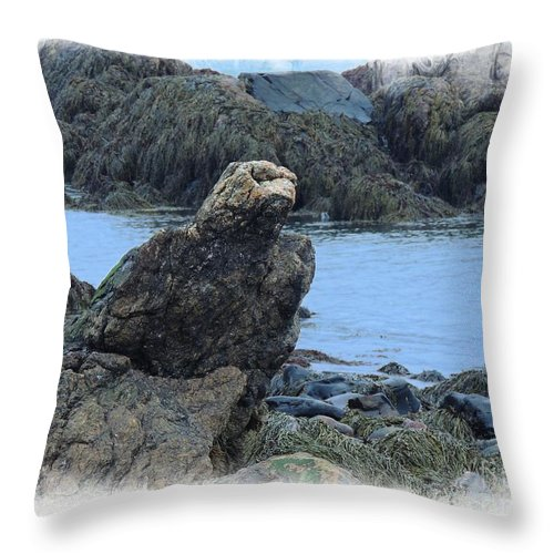 Nature Throw Pillow featuring the photograph Eagle At Rest by Marcia Lee Jones