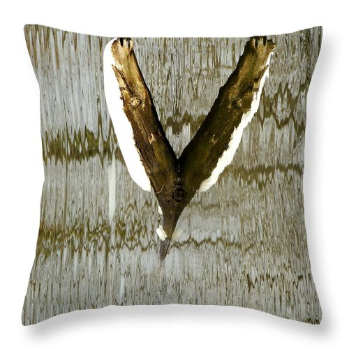 Abstract Throw Pillow featuring the photograph Eagle Wings by Marcia Lee Jones