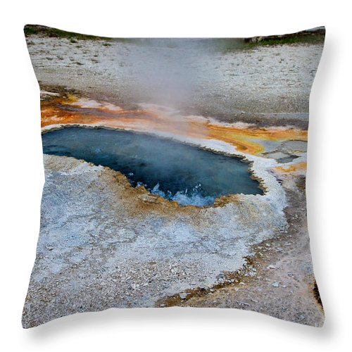 Ear Spring Throw Pillow featuring the photograph Ear Spring by Dan Hartford