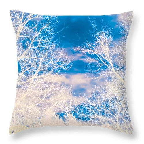Blue Throw Pillow featuring the photograph Early Morning by J Riley Johnson