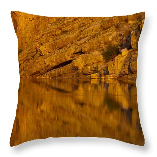 Santa Elena Canyon Big Bend National Park Texas Parks Canyons Rio Grande River Rivers Water Reflection Reflections Rock Rocks Stone Stones Landscape Landscapes Waterscape Waterscapes Throw Pillow featuring the photograph Early Morning Reflection by Bob Phillips