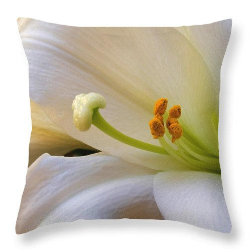 Easter Lilly Throw Pillow featuring the photograph Easter Lily by Bonnie Willis